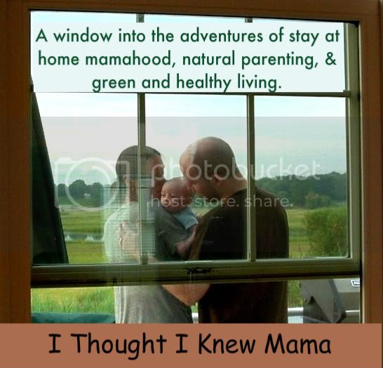 I Thought I Knew Mama: A window into the adventures of stay at home mamahood, natural parenting, &amp; green and healthy living